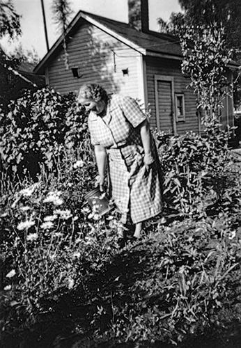 Puutarhanhoitoa Jyväskylän Tourulassa 1950-luvulla. Kuva: Keski-Suomen museo.