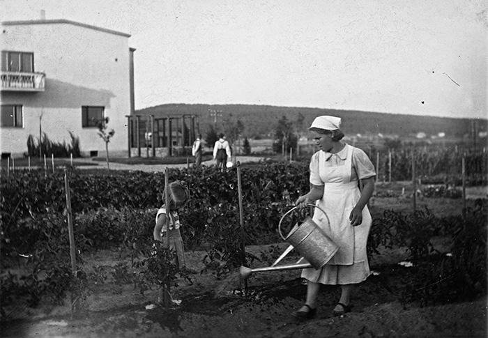 Tomaattien kastelua Tourulan Kivääritehtaan toimihenkilöiden asuintalon kasvimaalla 1940-luvulla. Kuva: Keski-Suomen museo.
