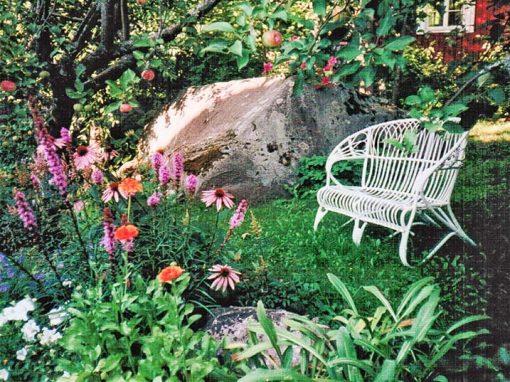 Leenan ja Martin puutarha: louhikosta kukkaloistoon