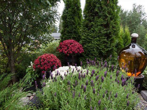 Marikan ja Arton puutarha: kivien, kasvien ja veden leikkiä