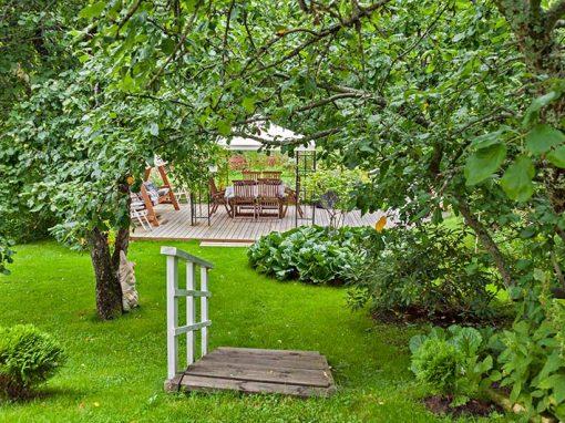 Iiriksen puutarha: perinteitä ja kukoistavia kasveja